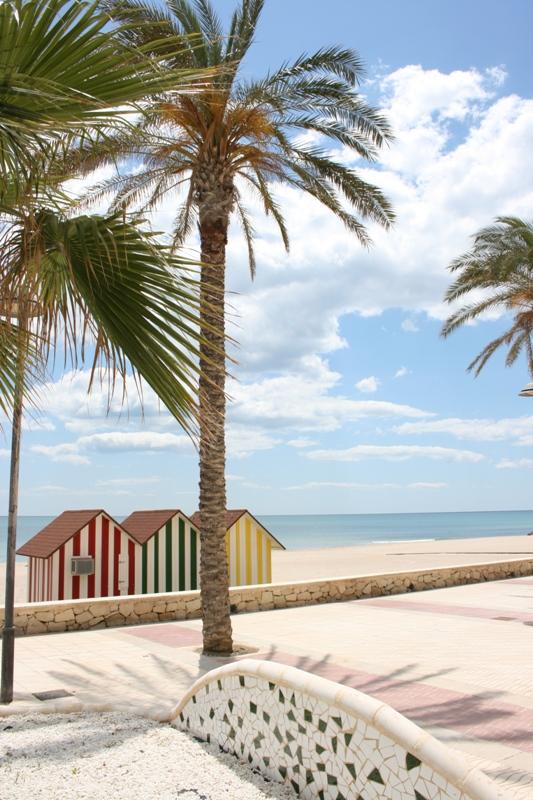 Paseo Playa de Muchavista