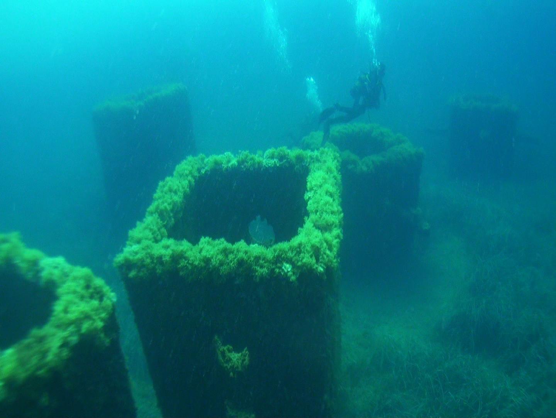 Ruta submarina  arrecife artificial